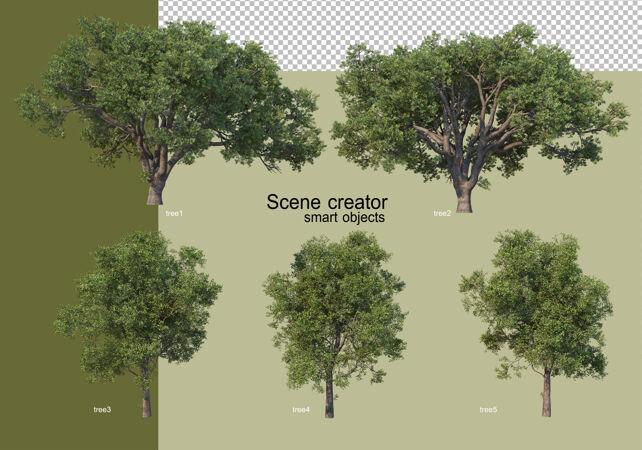 各种树木的3d渲染隔离